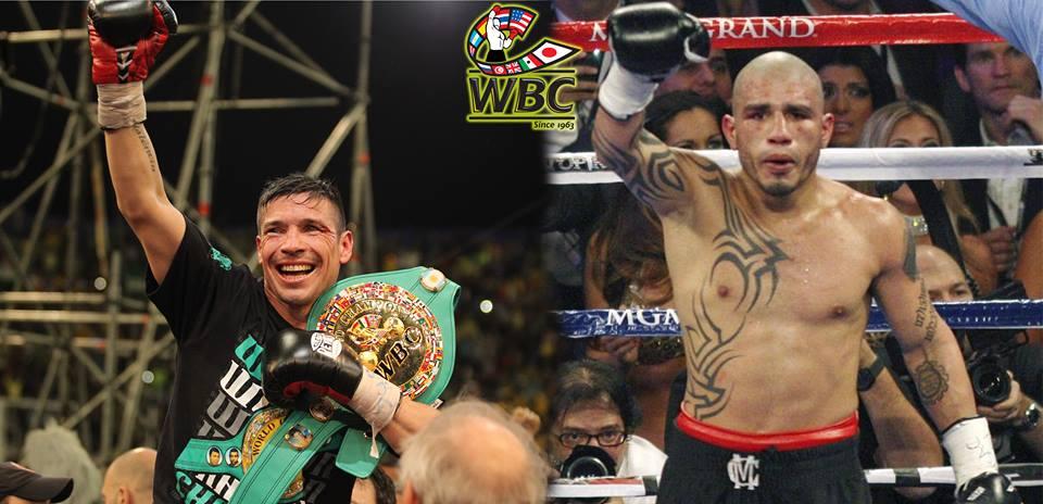 martinez vs cotto WBC