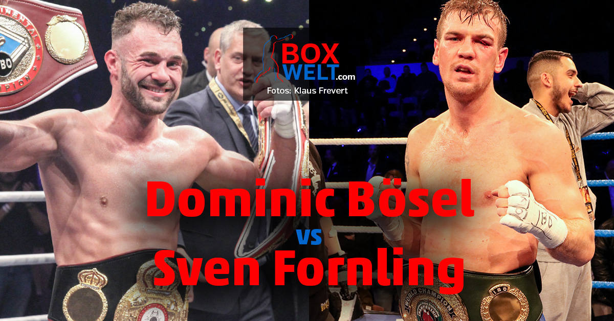 Dominic Bosel Vs Sven Fornling Am 16 November Boxwelt Com